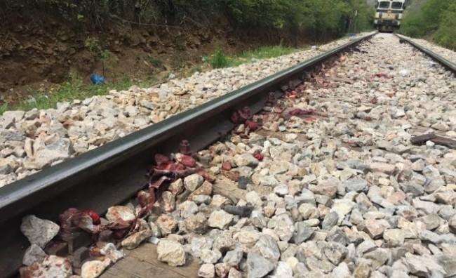 Воз излетал од пругата, нема повредени патници