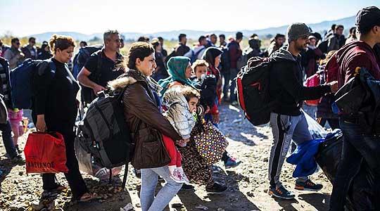 Издадени нови 543 потврди на мигранти