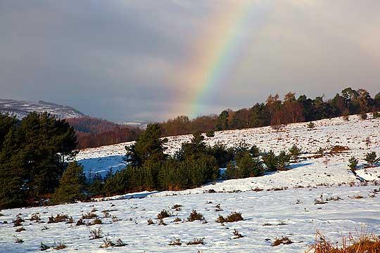 Снег на Шапка и Стража