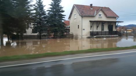 поплава