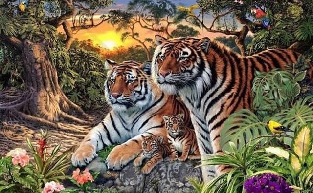 Можете ли да пронајдете 16 тигри на оваа фотографија?