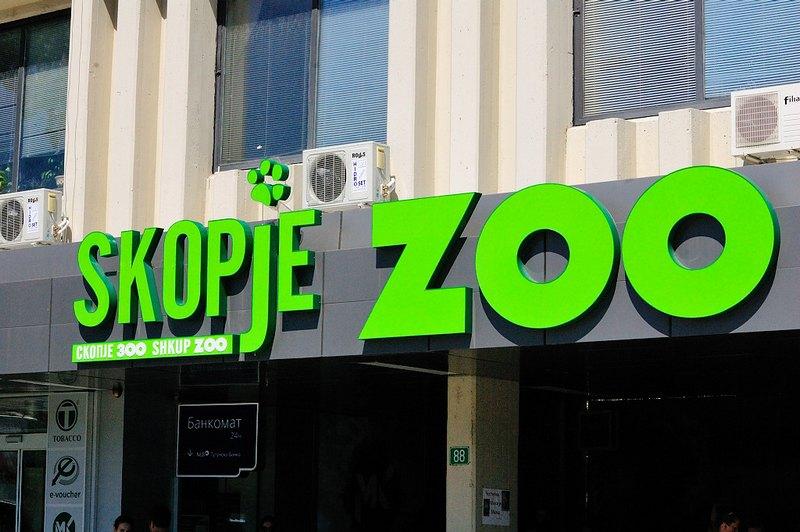 Кончето во Зоолошка не е мртво, туку се одмара