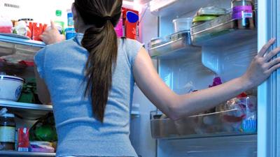 fridge-fat-400x400