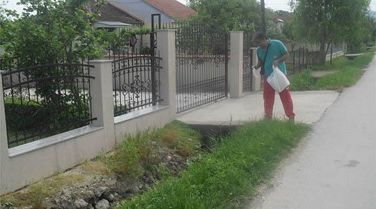 Во Охрид превентивно запрашување против комарци