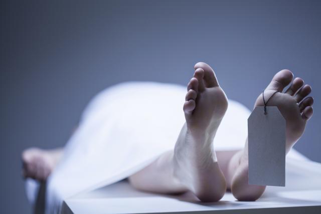 САД: Нучници добија дозвола да оживуваат мртви