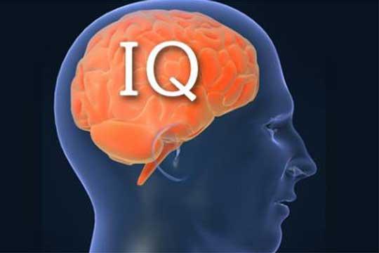интелигенција