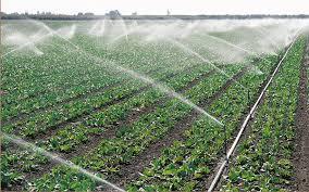 100.000 евра од Прогрмата за рурален развој за нов систем за наводнување во Ранковце