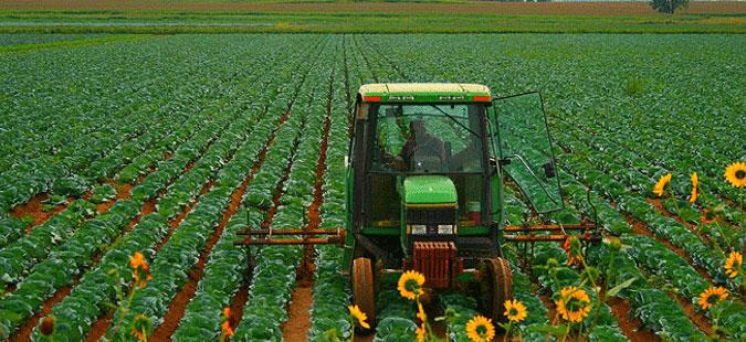 Завршува рокот за закуп на државно земјоделско земјиште