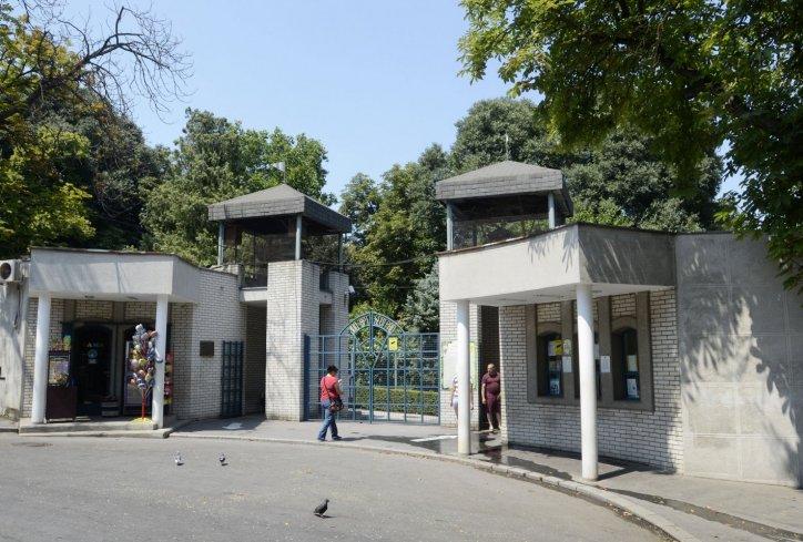 Белград: Дете погодено од струен удар во зоолошка градина
