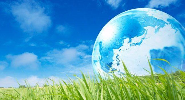 """Проект """"Чиста околина"""" за Светскиот ден на животна средина"""