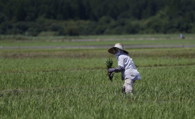 oriz-fukushima