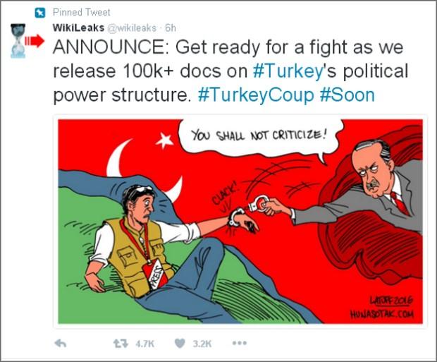 Wikileaks-Turska
