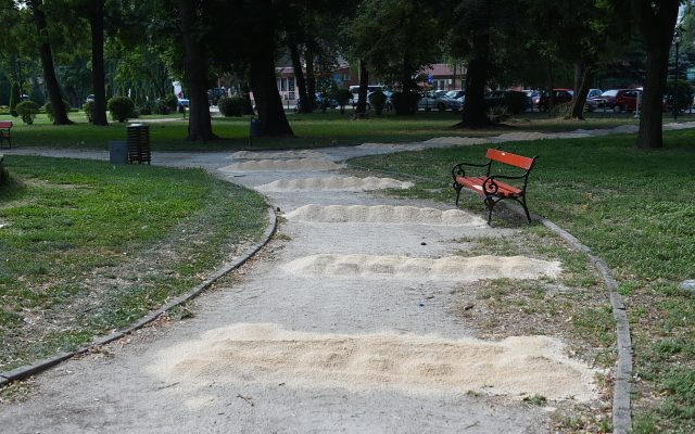 Rekonstrukcija na pateki vo prviot del na Gradskiot park (2)