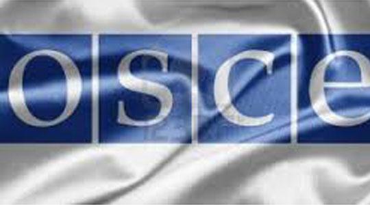 ОБСЕ со 500 набљудувачи ќе ги следи изборите во САД