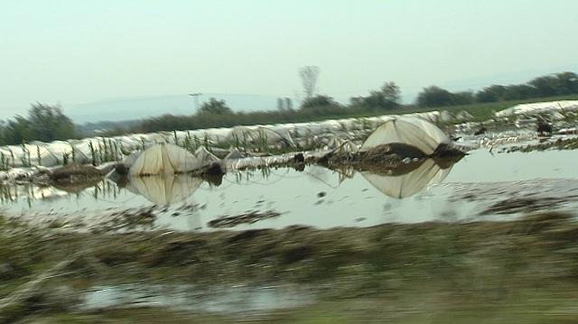 poplava-zemjodesltvo