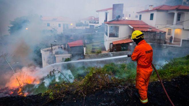 Пожарите во Португалија однесоа четири жртви  (ВИДЕО)