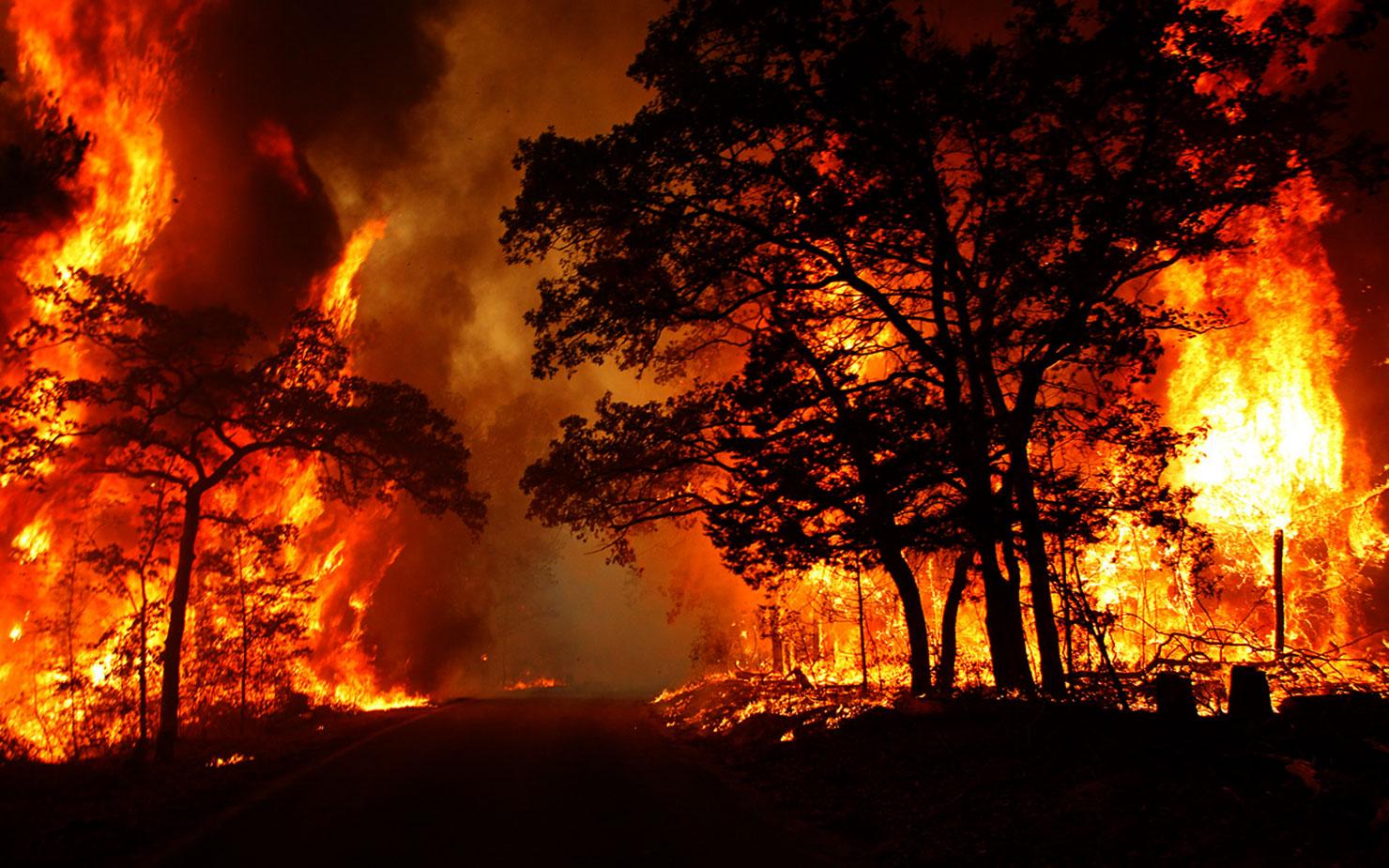 Над 82.000 лица ќе бидат евакуирани заради новиот пожар во Калифорнија