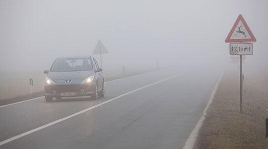 магла
