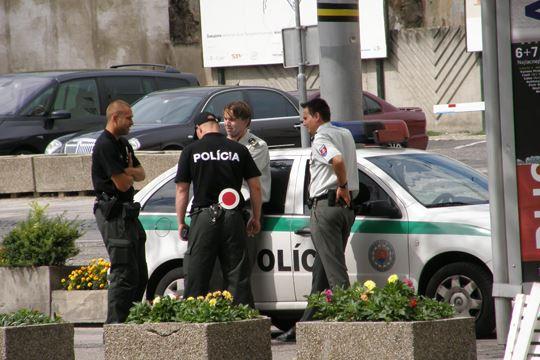 полицајци