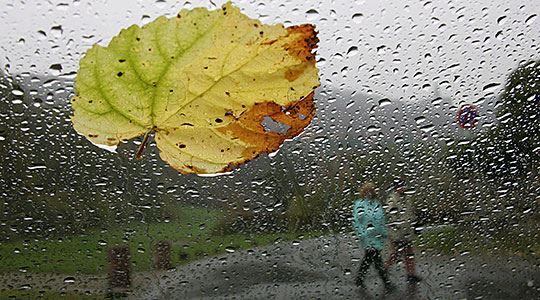 Најмногу дожд во Пожаране и Тетово