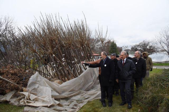 Ќе се засадат милион садници во Скопје