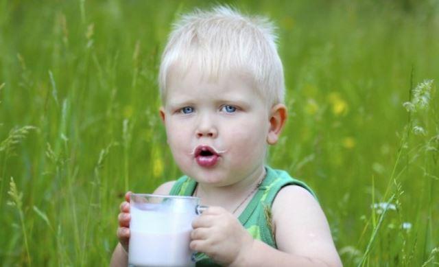 Експертите предупредуваат: 99 отсто од децата пијат премногу млеко!