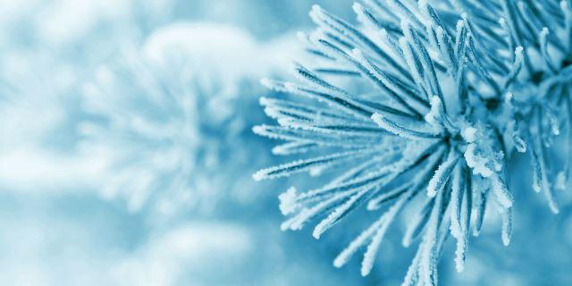 Утрово најстудено во Берово