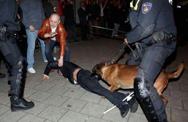 Еве како холандската полиција се справува со турските демонстранти