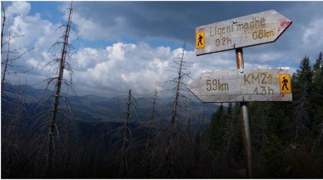 Косовските граѓани се за демаркацијата со Црна Гора, не сакаат укинување на Специјалниот суд