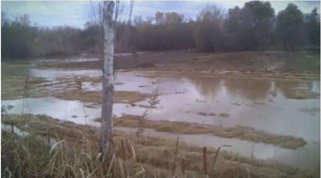 Излевање на реките кај Јегуновце, Радуша и во кумановско