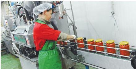 Само преработувачката индустрија во јануари пораснала за 16,9 отсто