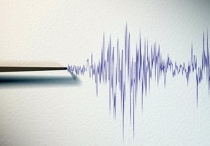 Земјотрес ја стресе Црна Гора