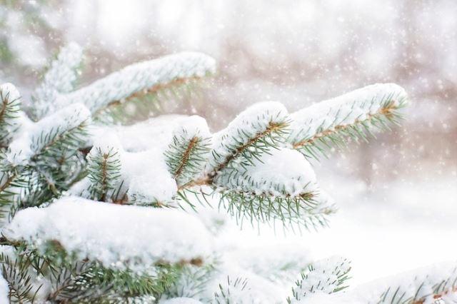 УХМР го прогнозираат првиот снег