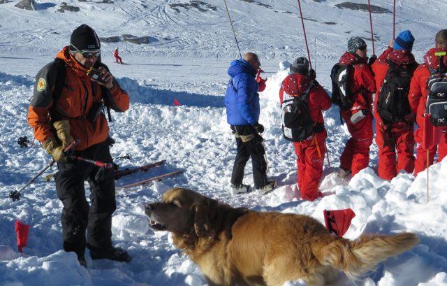 Во три лавини во француските Алпи две жртви и едно исчезнато лице