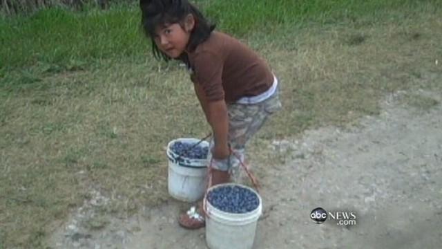 Над 5.000 деца жртви на детски труд во Колумбија