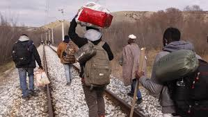 Приведени 16 мигранти во Липково