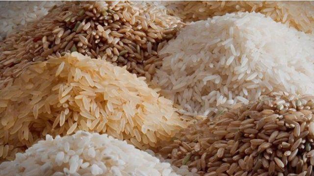 Во Македонија протурени генетски модифициран ориз и соини шницли